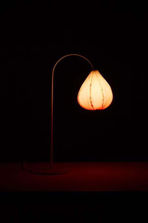 """Настольные лампы """"Цветы"""" от Kristine Five Melvær's"""